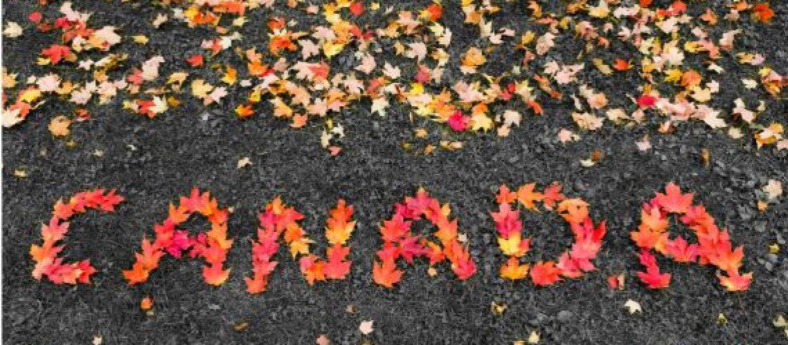 Canada Maple Leaf